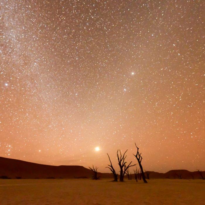 Mit Sternen übersähter Himmel während der Dämmerung am Deadvlei