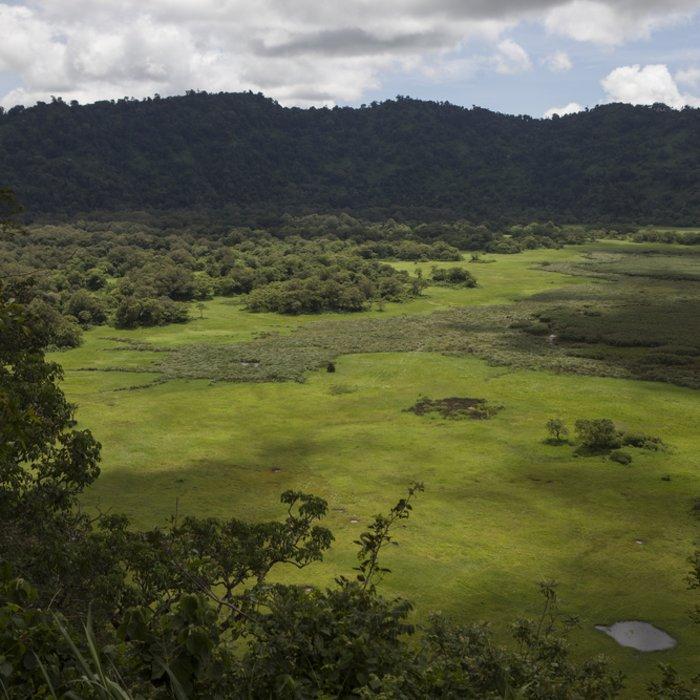 Luftaufnahme der Savanne im Arusha-Nationalpark in Tansania