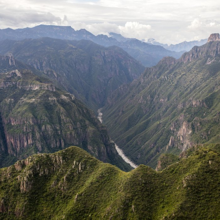 Der grüne Copper Canyon
