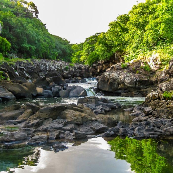 """Steinerner leicht abfälliger Bachverlauf im """"Black River Gorges National Park"""" in Mauritius"""