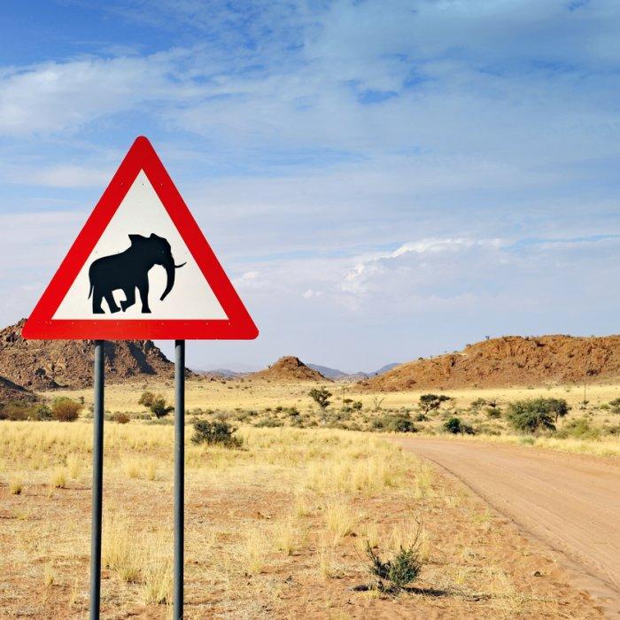 NA.Twyfelfontein  Elefanten-Warnhinweis vor der Landschaft von Twyfelfontein