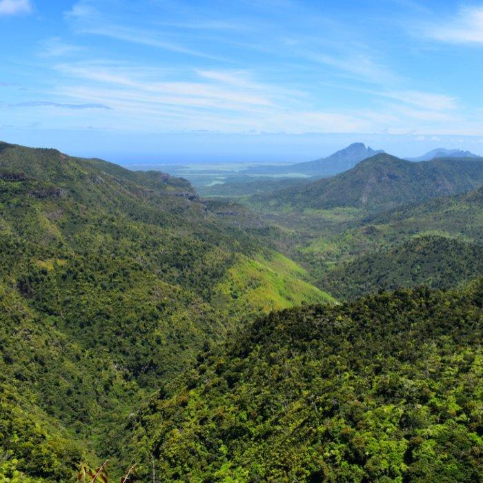 Der Black River Gorges Nationalpark