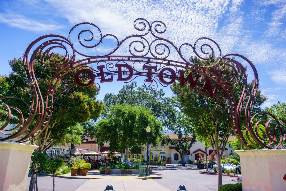 Top Things to Do in and Around Los Gatos