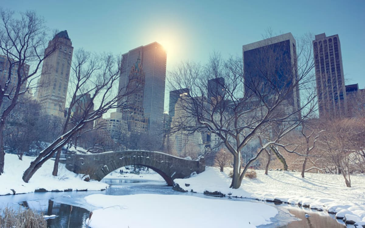 Bridge and pond in Central Park covered in snow.