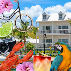 See Key West by Bicycle