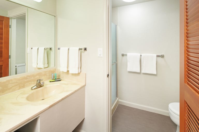 GARDEN VIEW ROOM Bathroom