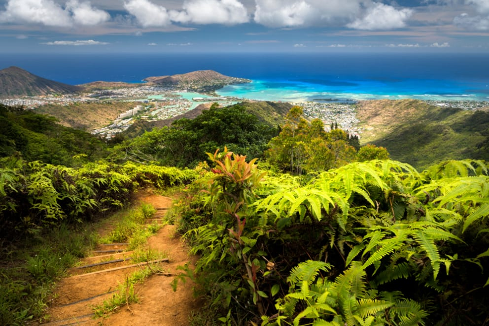 5 Facts About Oahu for the Curious Traveler