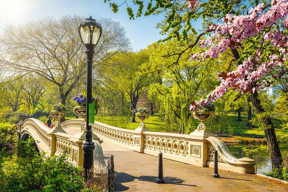 5 Experiences to Have in New York this Spring