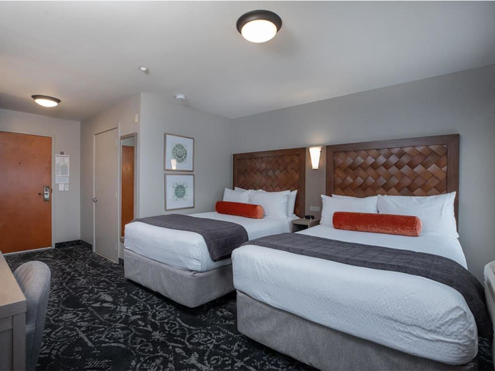 Accessible Double Full Guestroom with Roll-in Show