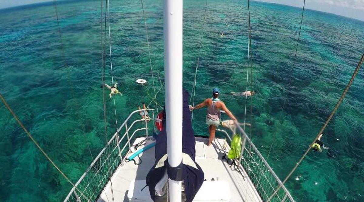 Daily snorkeling adventures and sunset sailing trips