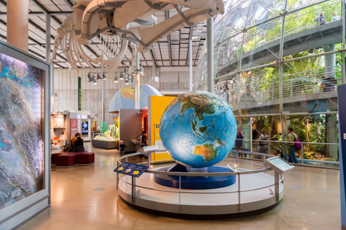 interior-view-of-california-academy-of-science-museum