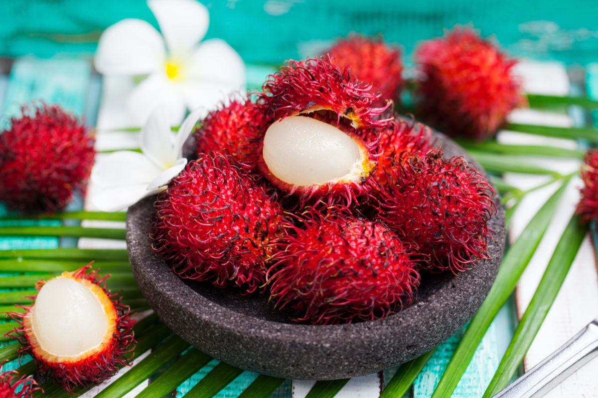 rambutan-fruit-hawaii