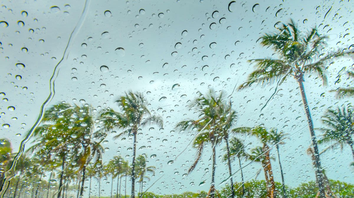 10 Things to Do in Miami When it Rains