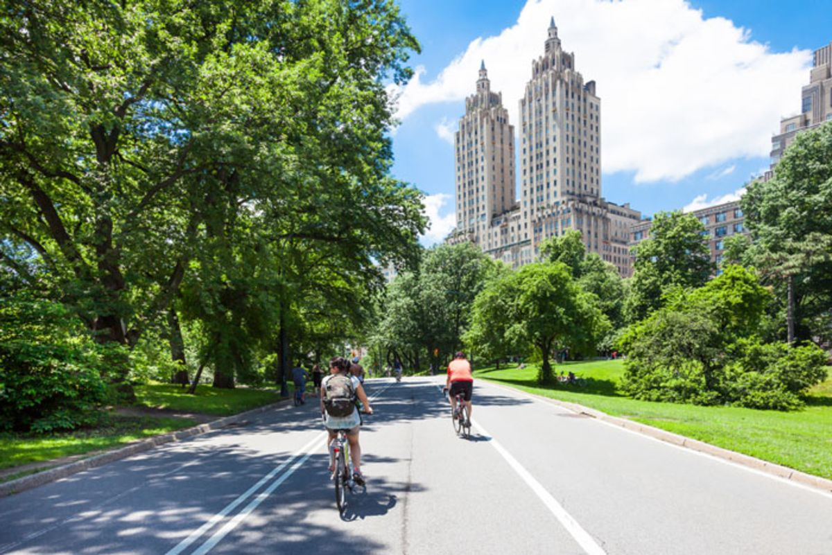 people-cycling-along-central-park-roads-on-sunny-day
