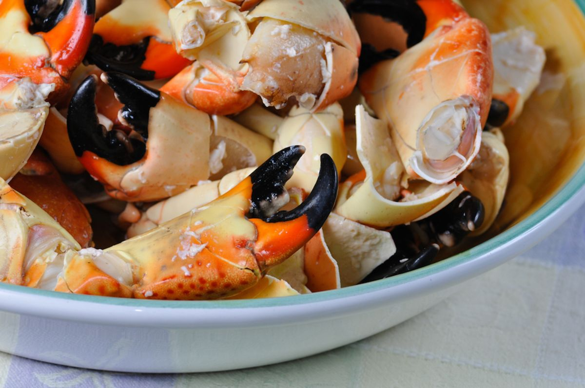 Your Guide to Stone Crab Season in Miami