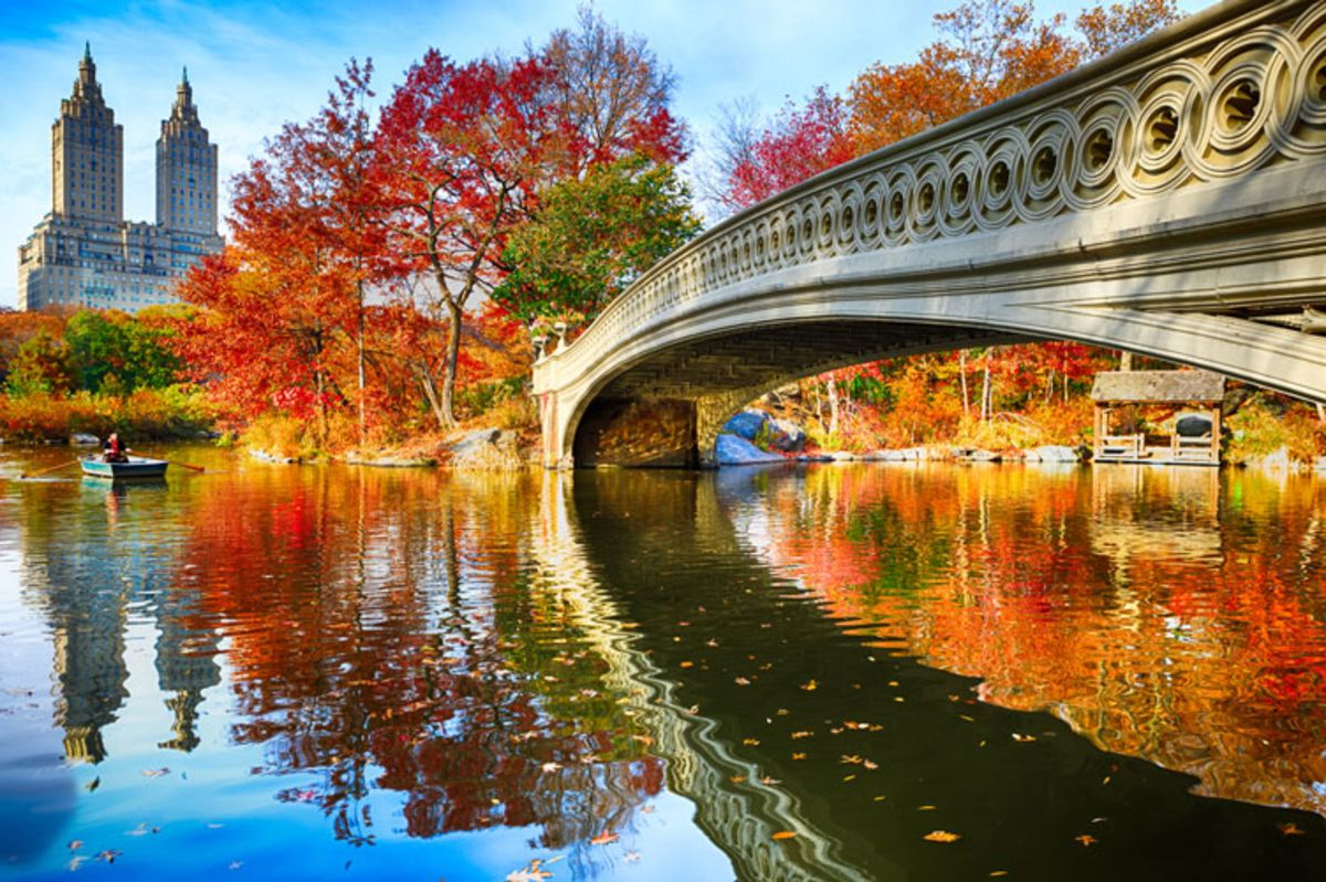 Bow Bridge and people rowing a boat in Central Park in fall