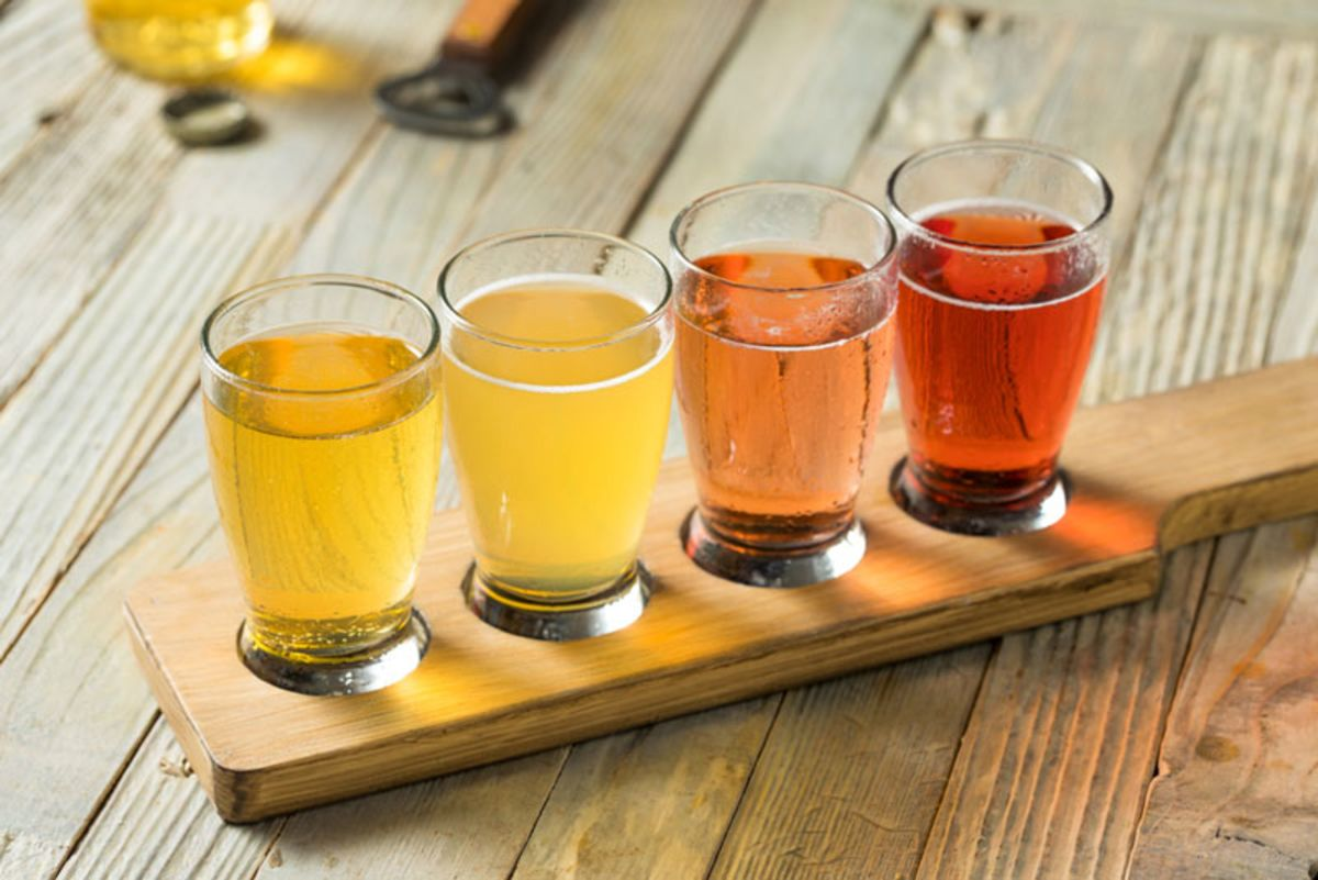 Table with four different ciders for tasting.