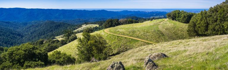 Verdant green hills in Santa Cruz mountains