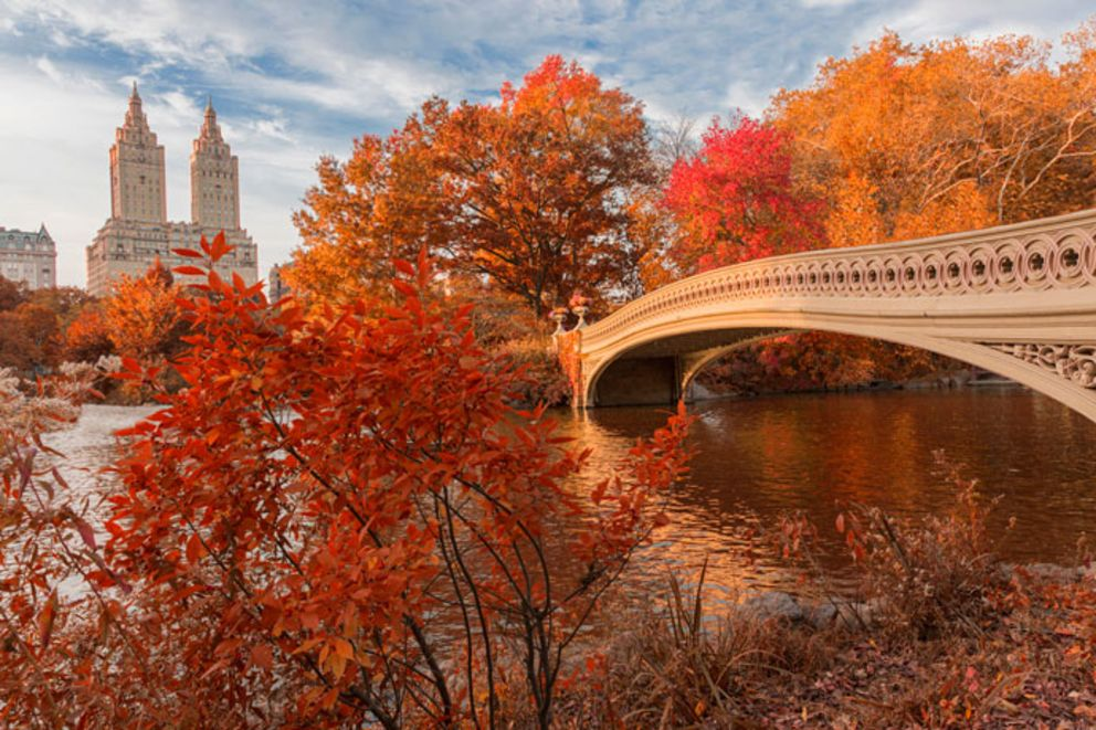 Top New York City Fall Events, 2019