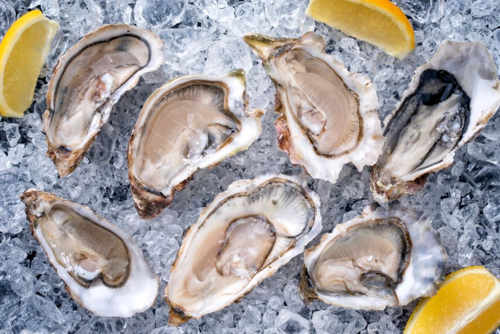 Take One Last Trip to Long Beach for Oyster Fest