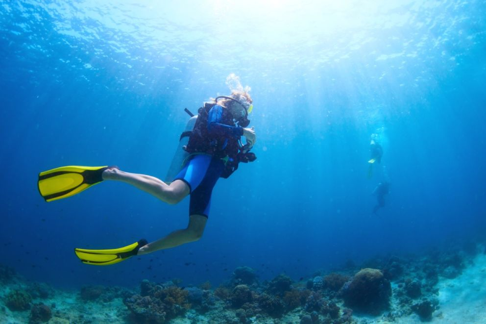 Book scuba diving trips with Oceans Edge Resort and Marina