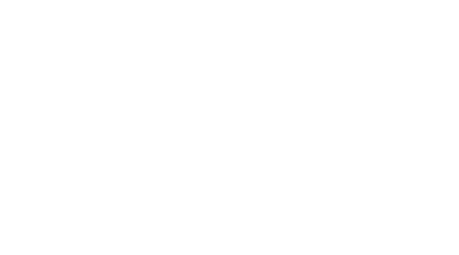 CarrolltonInn Logo White