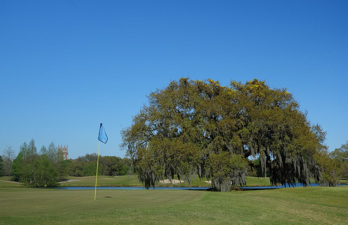 Bayou Oaks Golf Course