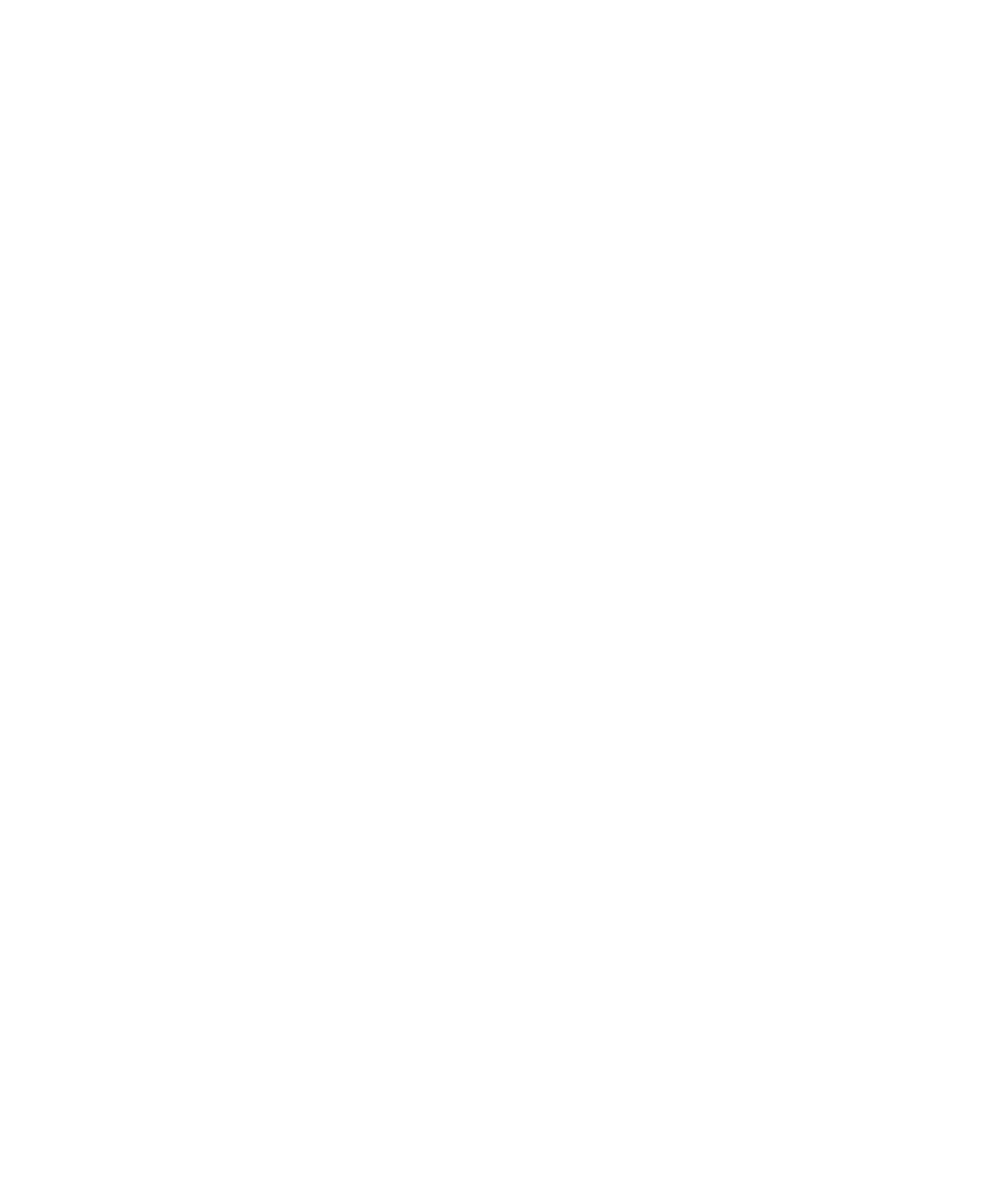 2020 Travelers' Choice Tripadvisor Badge