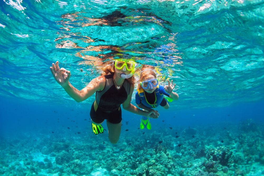 The Best Snorkeling Packages in Key West
