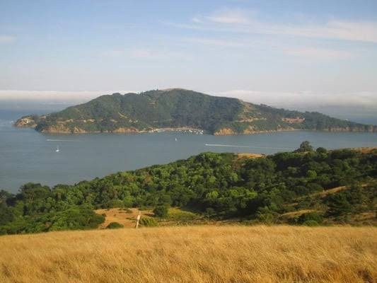 Tiburon Uplands Nature Preserve
