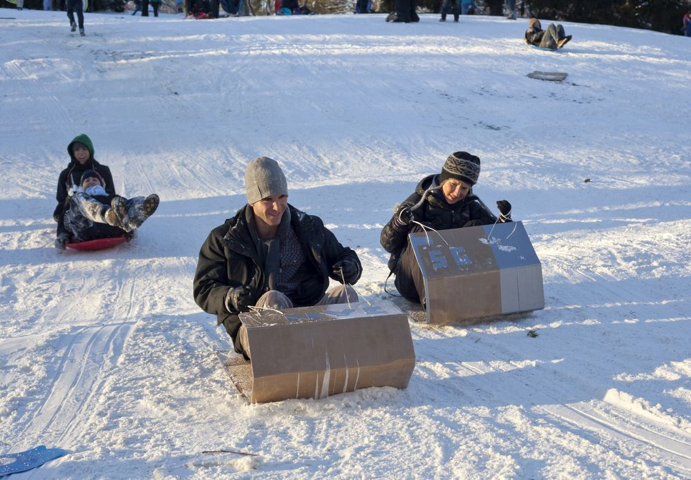 A Visitor's Guide to Sledding in New York City blog image