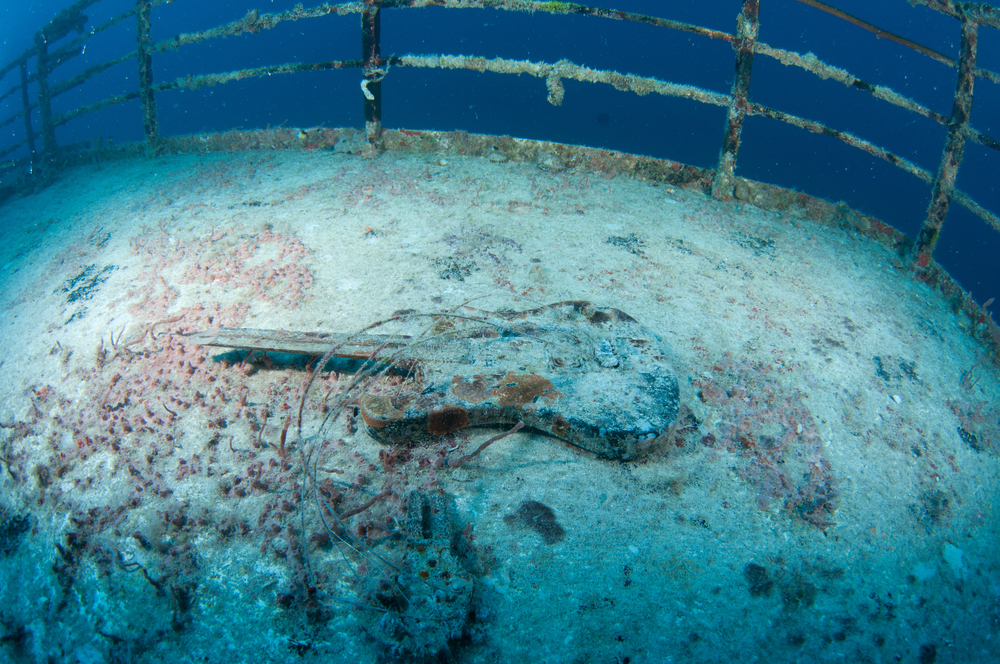The Intentional Sinking of the Vandenberg (and how to dive the wreck)
