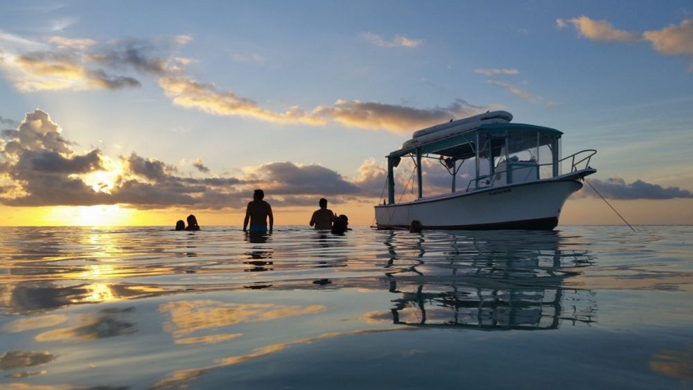 The Best Key West Eco Adventures for Small Groups