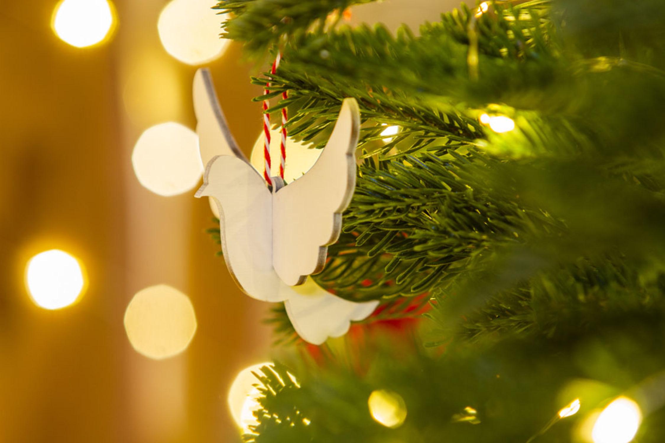A Truly Trebah Christmas