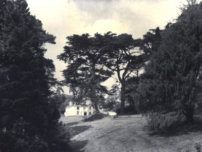 A Brief History of the Inhabitants of Trebah
