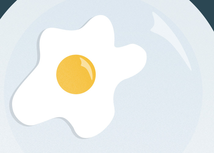 Illustration of a fried egg on a plate