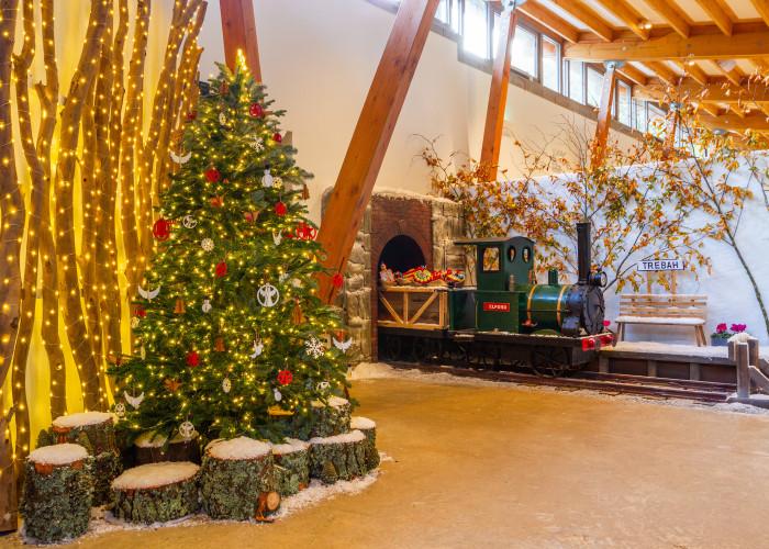 Christmas at Trebah