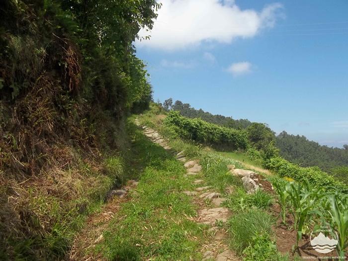 Caminhada pelo Vale do Urtigosa
