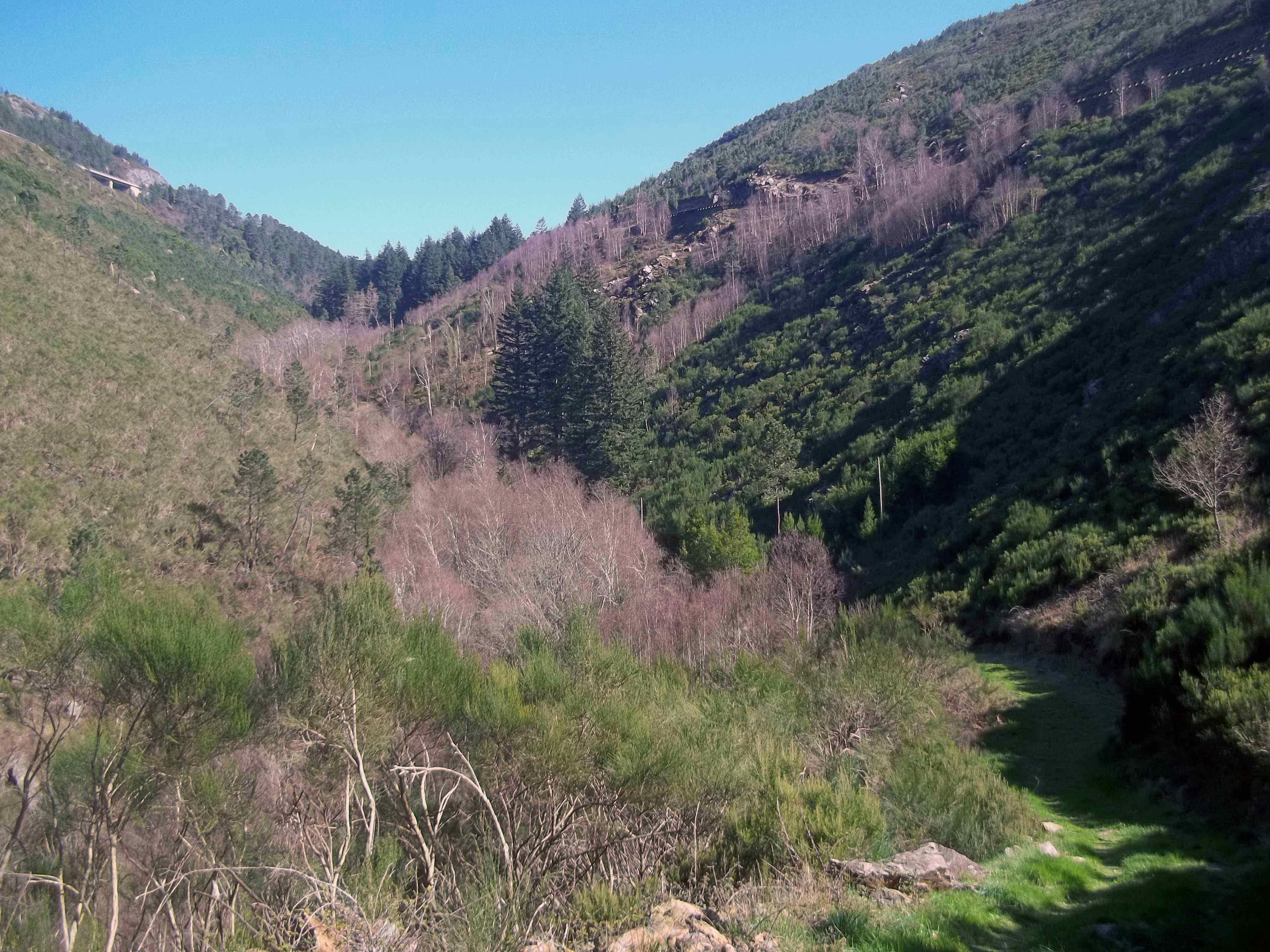Por montes e vales na serra do Marão