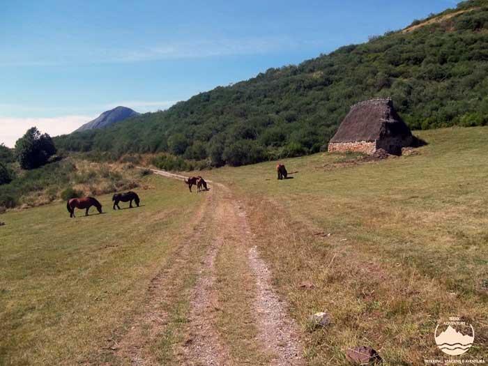 Parque natural de Somiedo - 4 dias