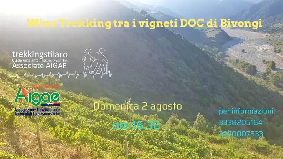 Wine Trekking tra i vigneti DOC di Bivongi