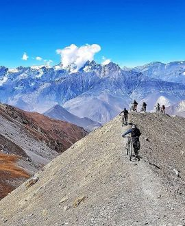 Biking & Cycling