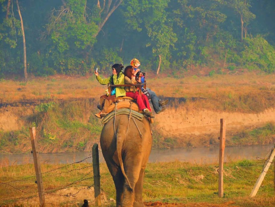 riding elephant at chitwan national park