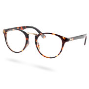Amber Transparent Cat-Eye Glasses