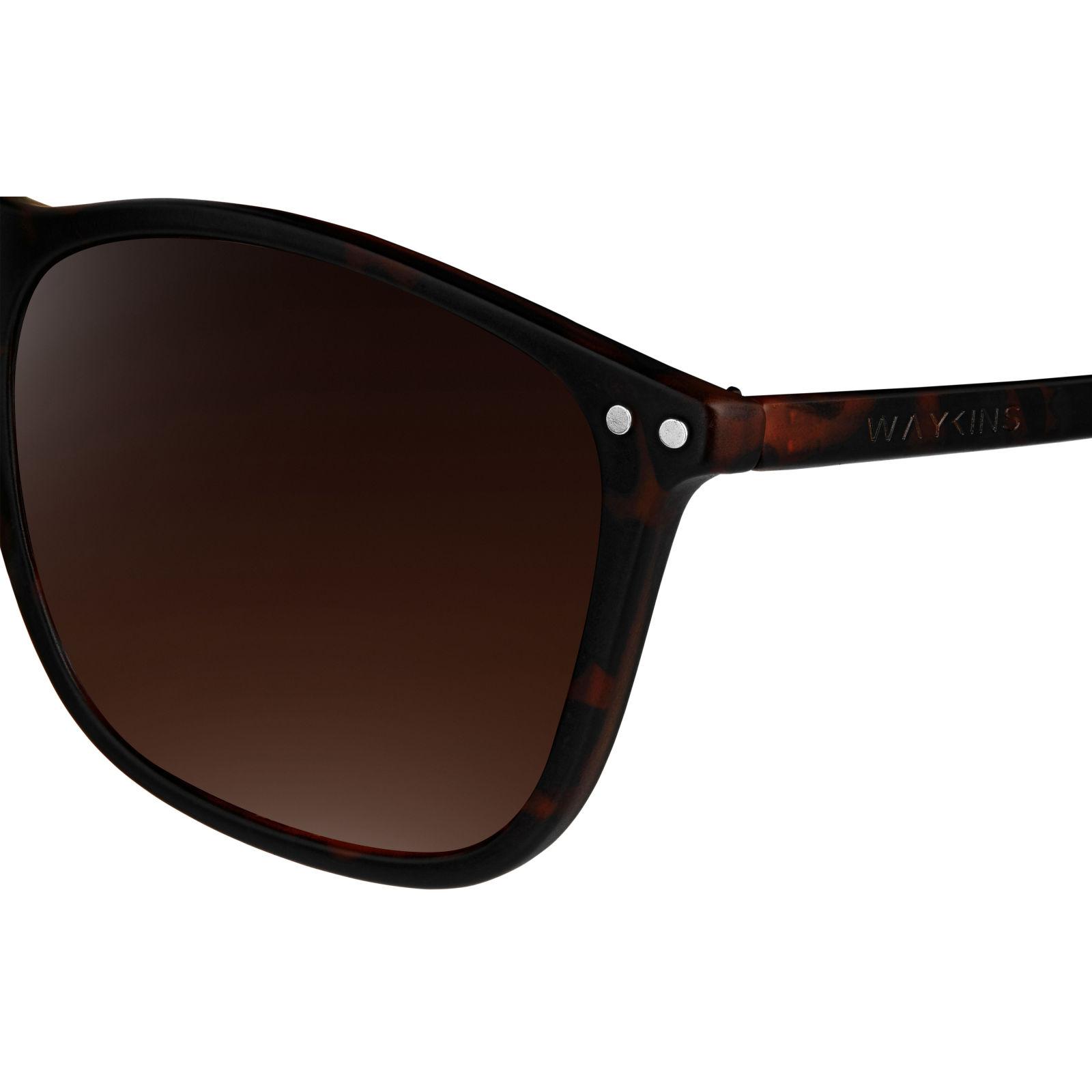 Γυαλιά Ηλίου Walden Tortoise   Brown  96e8792a74e