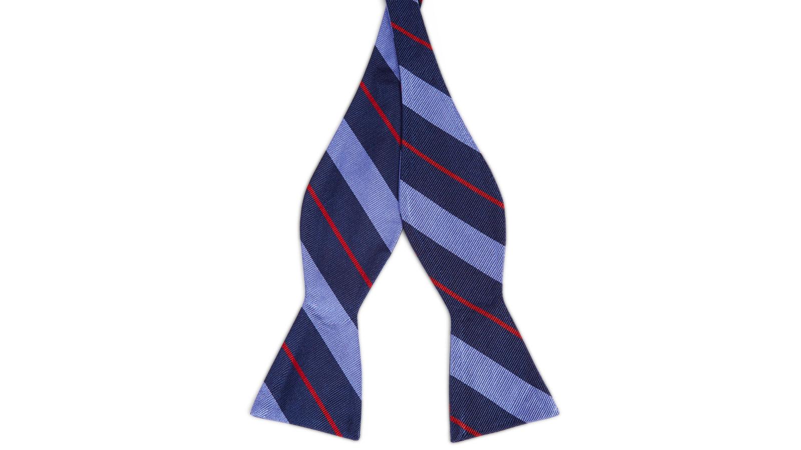 e7d5738d397 Παστέλ Μπλε & Κόκκινο & Navy Μπλε Ριγέ Μεταξωτό Δετό Παπιγιόν | Σε απόθεμα!  | TND Basics