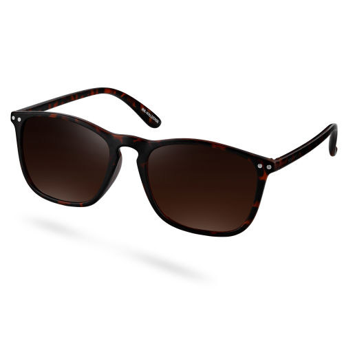 Γυαλιά Ηλίου Walden Tortoise   Brown 7376b847eea