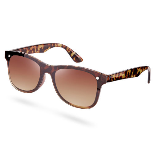 813146c690 Gradient Brown Tortoise Shell Sunglasses