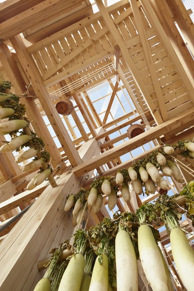 Green Building by Nature- Nest We Grow; Taiki-cho, Hiro-gun, Hokkaido, Japan / University of California, Berkely, College of Environmental Design. Image © Shinkenchiku-sha Co, Ltd.