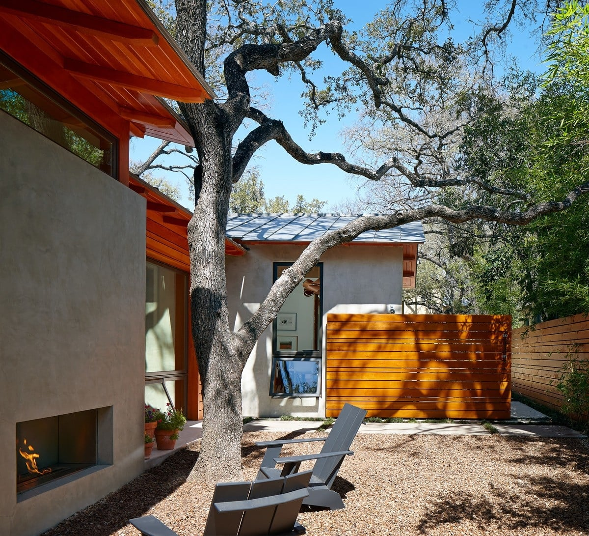 The architect built the home around an existing tree